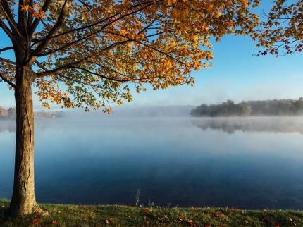 lake-983924_960_720